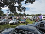 Edenbridge Motor Show 2018 004.jpg
