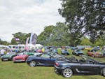 Edenbridge Motor Show 2018 005.jpg